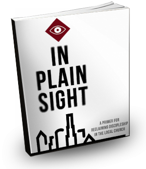 InPlainSight3DCover